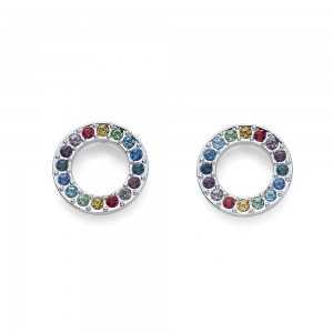 Earring Rainbow Circle
